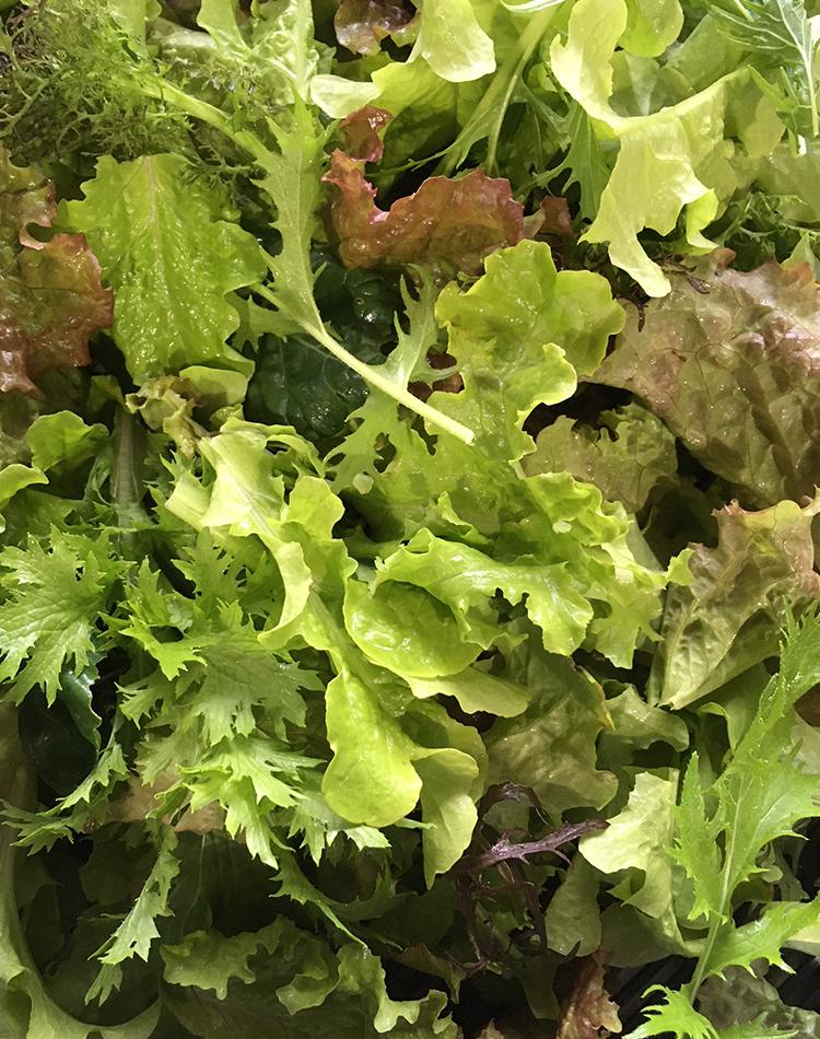 salad mix from Unity Farm