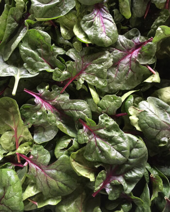 spinach from Unity Farm